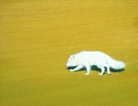 White Fox. 35x27cm.Oil on panel.